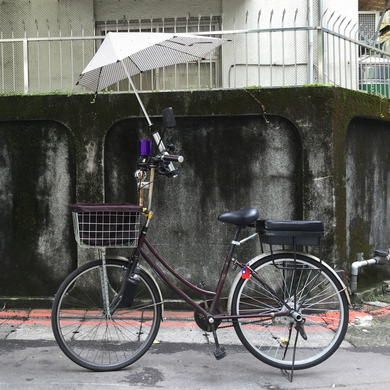 companion bike seat in taipei