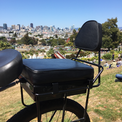 companion bike seat backrest