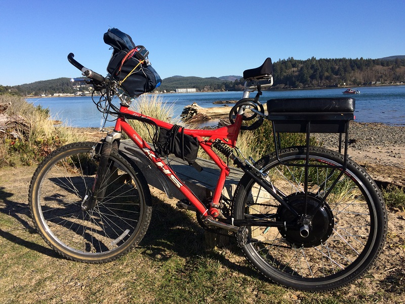 Companion Bike Seat installed on a bicycle with an ebike conversion kit overlooking a lake