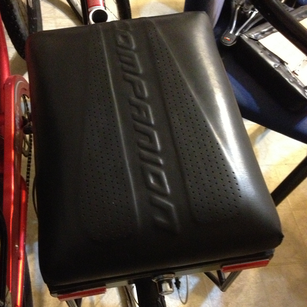 custom leather companion bike seat prototype